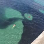 Aterradora mancha en el mar de las costas de California