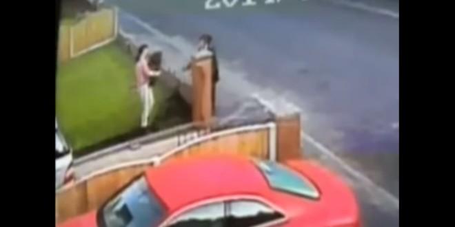 ladronas de césped