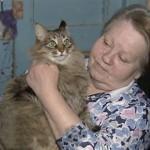 gata salvó la vida de un bebé