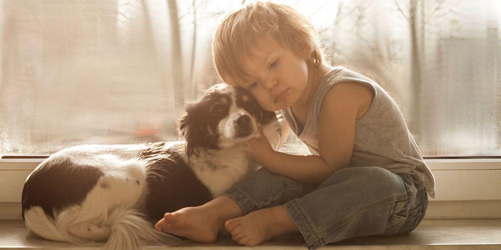 Una fotógrafa logró captar de manera magistral la amistad de su pequeño hijo con sus mascotas