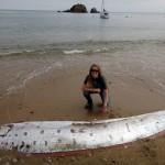 monstruo marino: el pez remo