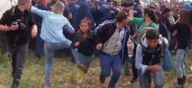¡Desalmada! Video de la cruel periodista que les mete zancadilla a los refugiados