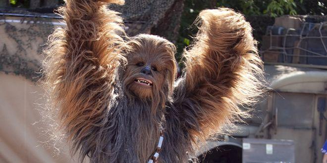 Chewbacca arrestado