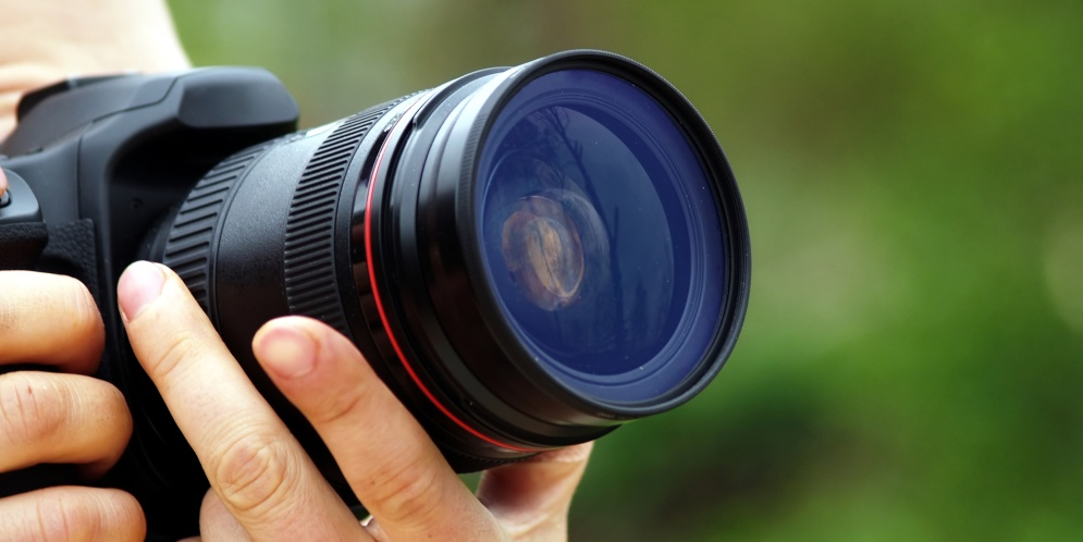 fotografo naturalista envenena aguilas