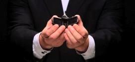 Conmovedora propuesta de matrimonio con un cómplice muy particular