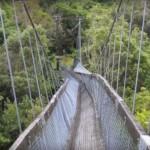 colapso de un puente colgante