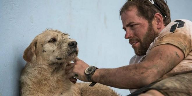 Conoce al perro abandonado que luchó sin descanso por quedarse con un equipo de atletas