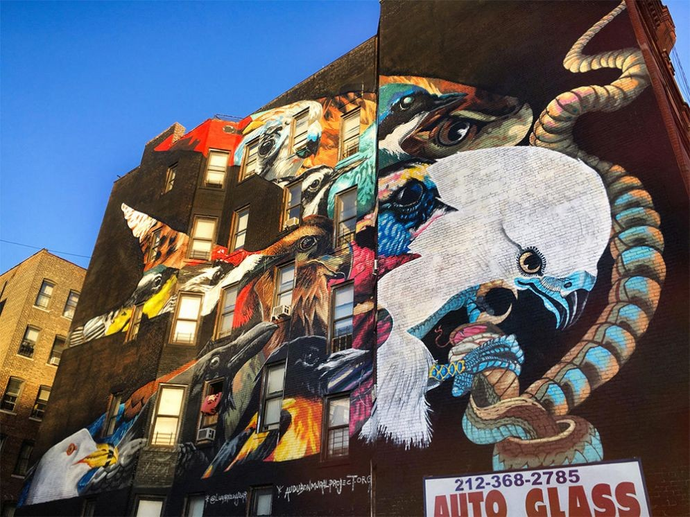 Aves gigantes se toman los muros de Manhattan