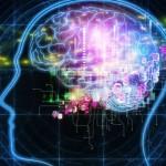 las células del cerebro sí se regeneran