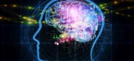 ¿Es verdad que las células del cerebro sí se regeneran? Despejamos esta incógnita