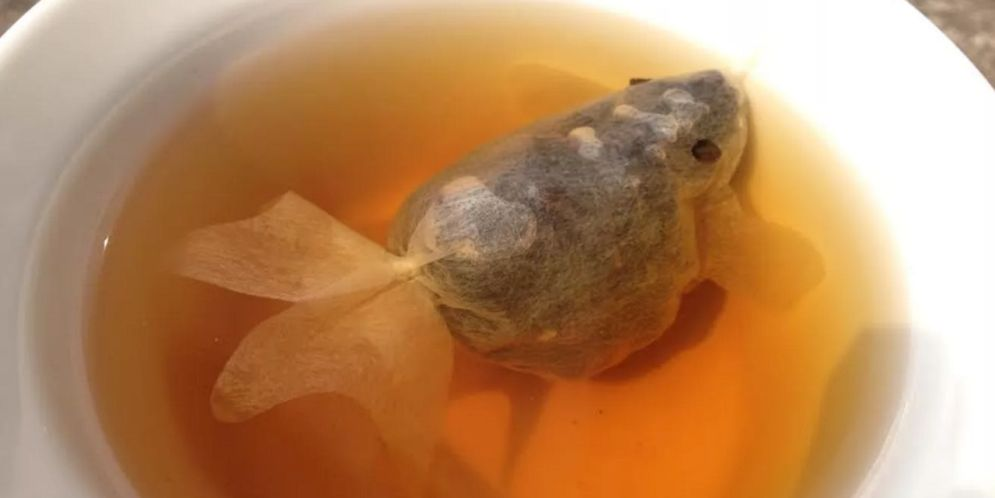 Creativas bolsitas de té que se convierten en pececitos en el agua